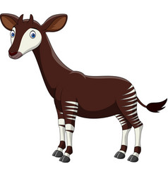 Cartoon okapi isolated on white background vector