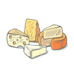 several types of cheese together vector image