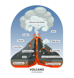 Volcano cross section with hot lava and volcanic vector