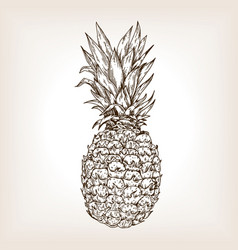 pineapple engraving vector image
