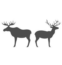 Elk Deer vector image