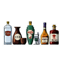 Bottles alcohol distilled beverage vector