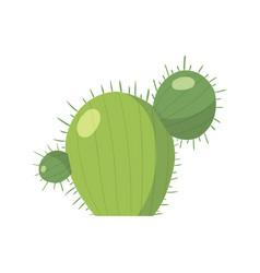 cartoon cactus set bright cacti vector image