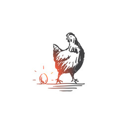 chicken and egg livestock poultry concept sketch vector image
