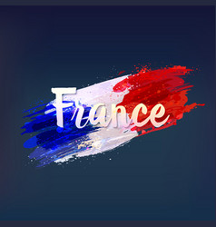 French national flag vector