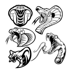 King cobra gold head head snake mascot set vector
