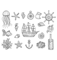 marine symbols fish ship shells boats ocean vector image