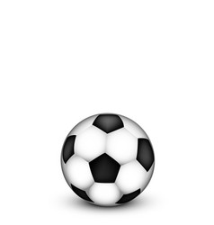 Soccer ball on a white background vector