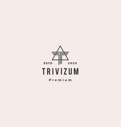 t letter triangle logo hipster vintage retro icon vector image