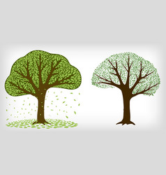 two trees and falling leaves vector image