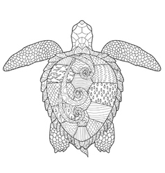 Adult antistress coloring page with turtle vector image