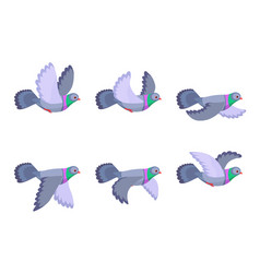 cartoon flying pigeon animation sprite isolated vector image