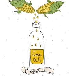 Corn oil in bottle Drops of corn oil vector image