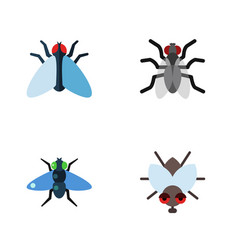 Flat icon housefly set of housefly gnat dung and vector
