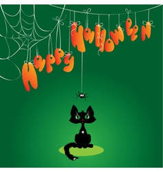 Funny Halloween Cat and Spider vector image