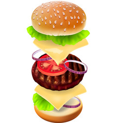 Hamburger - the view of every ingredient vector image vector image