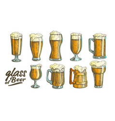 hand drawn glass color foam bubble beer set vector image