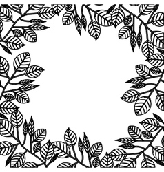 Isolated leaves frame design vector image