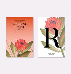 Macro protea realistic flower hand-drawn vector