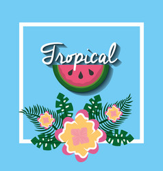 tropical watermelon fruit flower exotic natural vector image