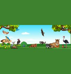 Wild animals in the zoo vector