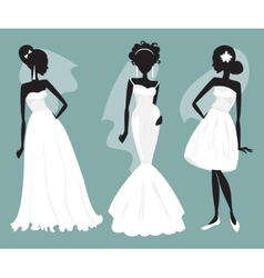 Set brides in various wedding dresses vector image