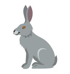 cute smiling wild hare cartoon vector image