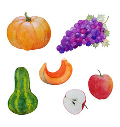 Autumn harvest vegetables vector