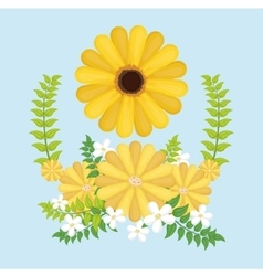 Colors flower over isolated background vector