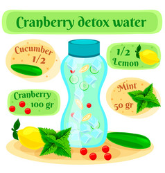 cranberry detox water flat composition vector image