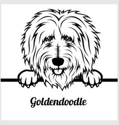 goldendoodle - peeking dogs - - breed face head vector image