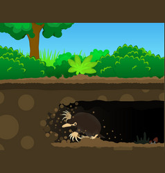 Mole dig cartoon vector