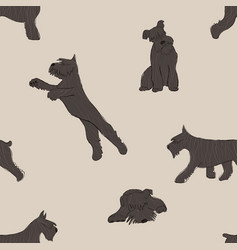 seamless pattern with schnauzer dog vector image