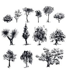 Sketch trees 1 vector image