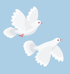 Two doves flying vector