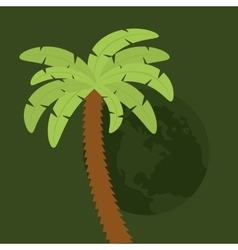 palms tree beach vector image
