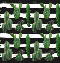 Cactus plant seamless pattern vector