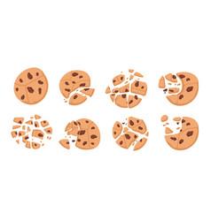 Chocolate chip cookies cartoon bitten broken vector