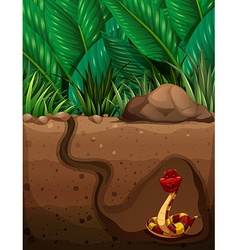 Snake living under the ground vector