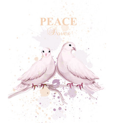 Watercolor doves birds peace card delicate vector