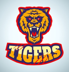 tigers vector image