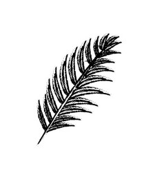Figure tropical branch leaves plant vector