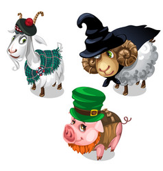 scottish wizard leprechaun costume on animals vector image vector image