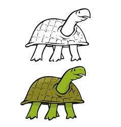 turtle coloring book vector image vector image