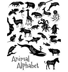 Animal alphabet poster for children vector