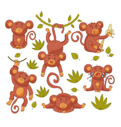 bamonkey child character mascot vector image