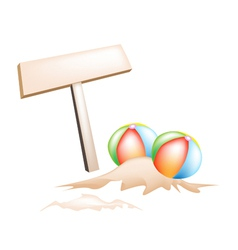 Beach Balls and Wooden Placard vector image