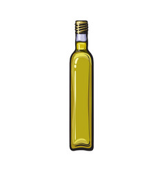 hand drawn nlabelled closed bottle of olive oil vector image