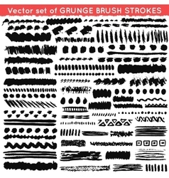 set grunge and ornamental different brush vector image