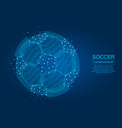 soccer ball point lines vector image